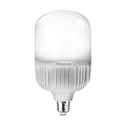 Bec LED 20W, T80, 3000K, E27